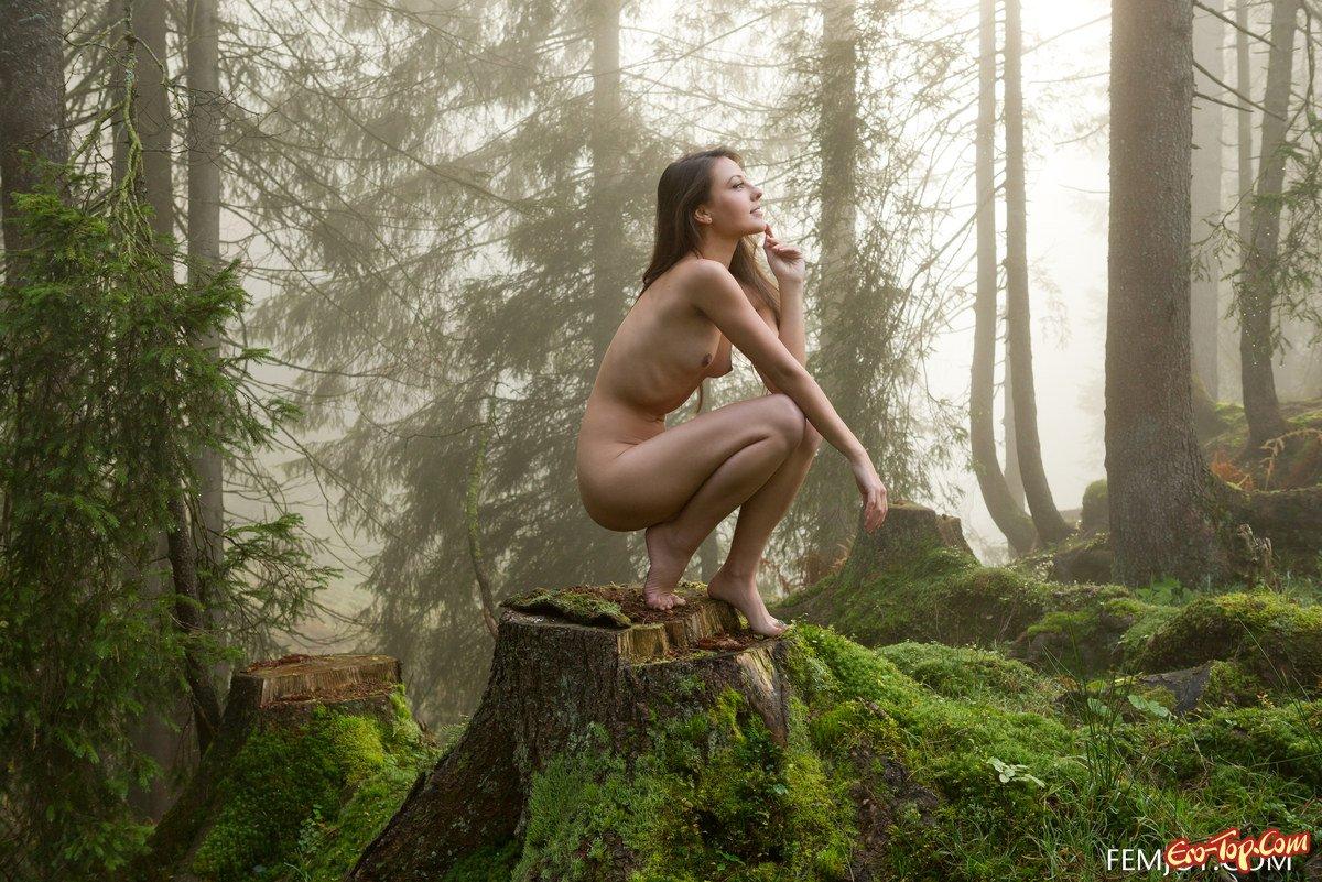 porno-svyazannie-v-lesu
