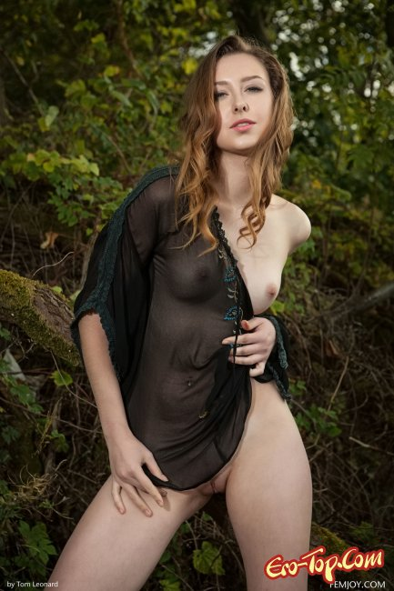 Ginger Frost � ����
