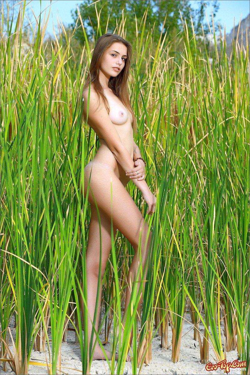 Нагая телка в траве