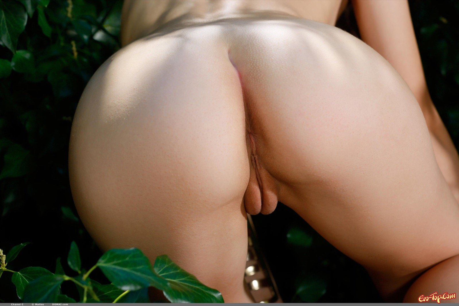 Голая модель с пухленькой писькой снимается в кустах смотреть эротику